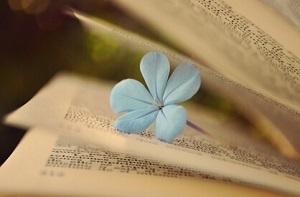 图书出版需要多长的时间周期