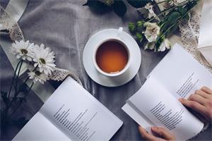 图书辅文,图书出版,个人出书